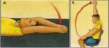 Изображение - Гимнастика после операции на плечевом суставе 7